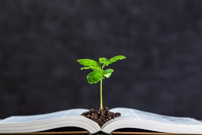 Nova Matéria a ser inserida na Escola – Educação Ambiental
